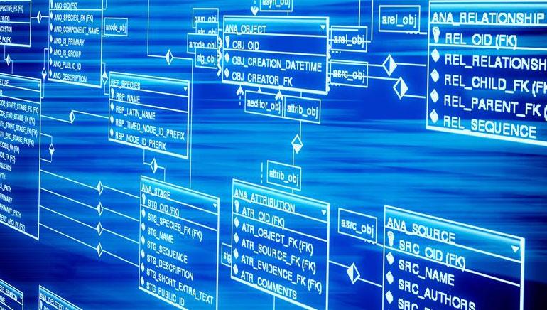 Veebikasiino tarkvara